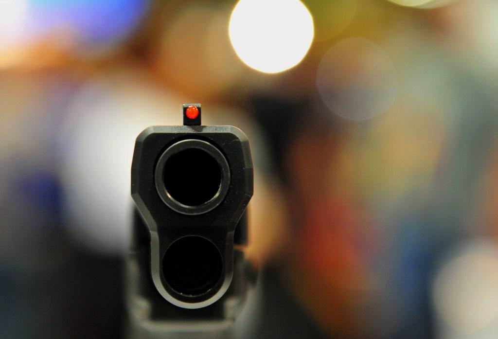 En el dictamen se especifican algunas características de las armas que podrán portar los agentes extranjeros