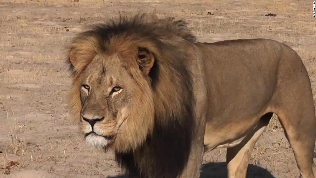 cecil león