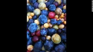 Los tipos de árboles del proyecto de Van Aken podría ahorrar espacio en las huertas e incrementar el acceso a diverso número de frutas en un solo cultivo.