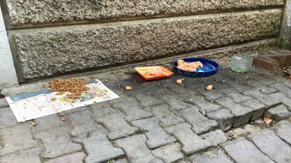 Residentes en Estambul dejan comida en las calles para los perros callejeros. (Crédito: Sara Sidner/CNN)