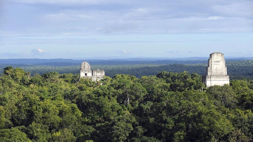 Parque Tikal Guatemala, Petén, Guatemala.