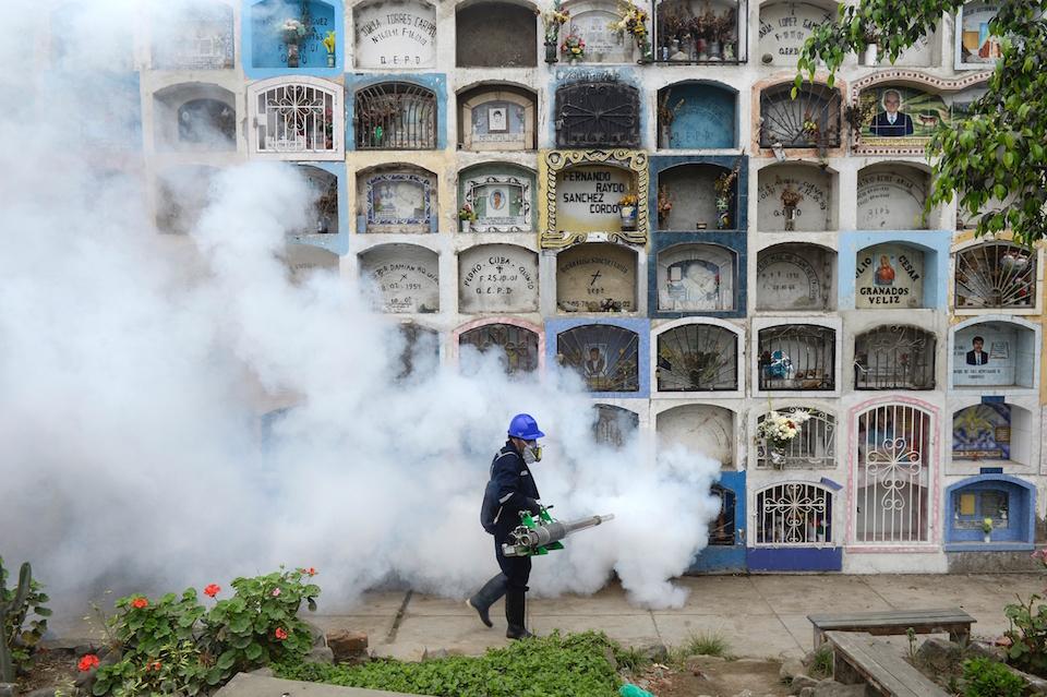 Un hombre fumiga parte del cementerio de la Nueva Esperanza , en la zona metropolitana de Lima, como medida de prevención contra enfermedades como Chikunguya y Zika, que afectan varios países de América Latina. En otras regiones del mundo, ya se reportan casos de la enfermedad del Zika. (Crédito: ERNESTO BENAVIDES/AFP/Getty Images).