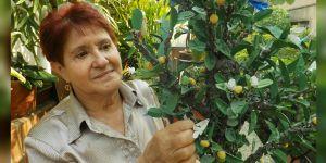 Las mujeres y los paramilitares que están en la cárcel construyen árboles como excusa para el diálogo entre víctimas y victimarios y facilitar el proceso de reconciliación. (Crédito: Angie Palacio)