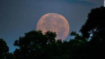 El día más largo del año, este lunes, marcó el solsticio de verano, el inicio de la temporada, y trajo consigo una 'luna de fresa', llamada así por la creencia de que la temporada de cosecha de la fresa está en su mejor momento en esta época del año. Así se vio en Kathleen, Georgia.