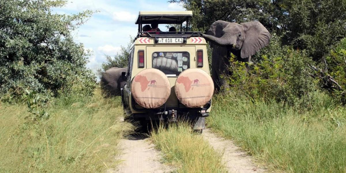 El parque se ubica en un camino de migración para elefantes y otras especies entre Botswana y Angola. (Crédito: CNN, Nambwa Tented)