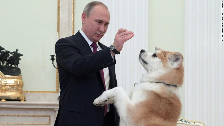Putin juega con su perra Yume antes de la entrevista con unos periodistas japoneses.
