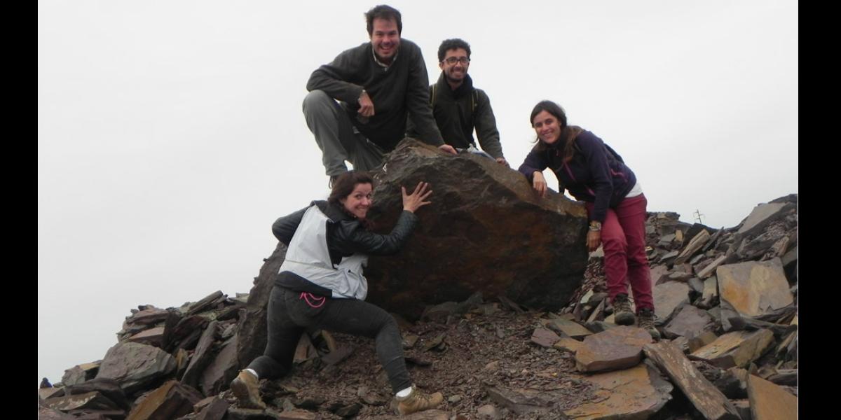 conicet-equipo-fosiles-2-antiguos-500-millones-de-anios-argentinca-cnn
