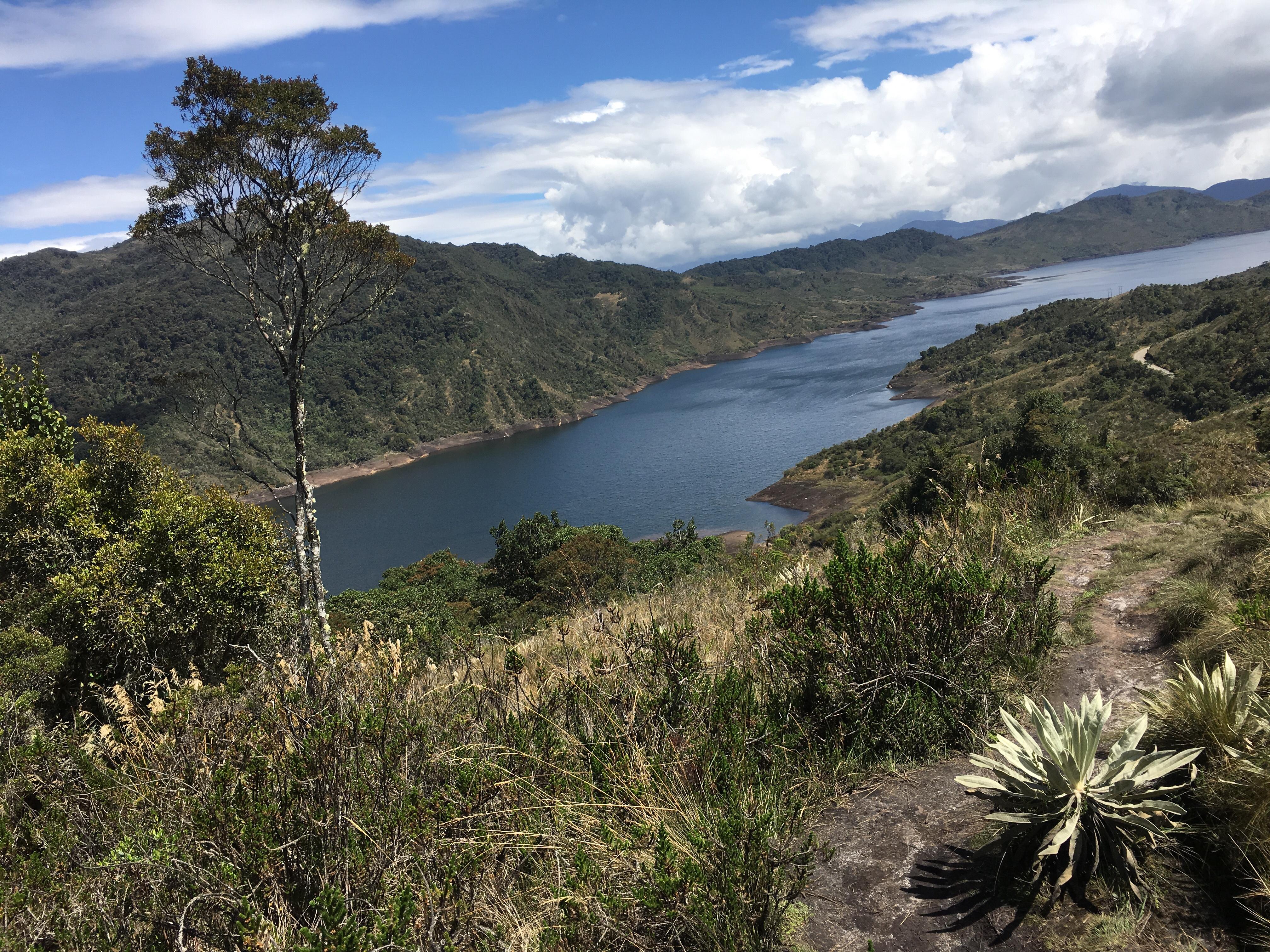 El Parque Nacional Natural Chingaza no solo es un lugar muy lindo. También es muy importante para Colombia, pues provee el 70% del agua que consumen Bogotá -con unos 8 millones de habitantes- y varios municipios cercanos.
