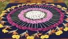 Acá está la alfombra de aserrín más grande del mundo