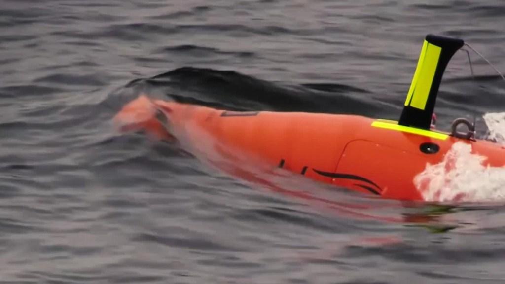 Las empresas que quieren encontrar al submarino ARA San Juan
