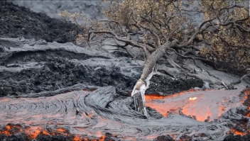 #ElDatoDeHoy: alerta en Hawai por posible erupción de volcán