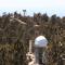 SAINT-EX, proyecto único en México de búsqueda de exoplanetas. (Crédito: UNAM)