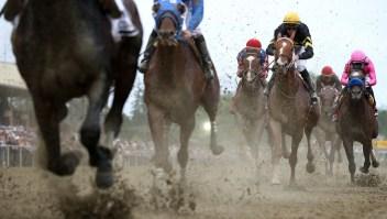 Preakness Stakes: 5 curiosidades sobre la segunda carrera de la Triple Corona
