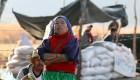 Indigenas en México piden devolución de tierras o no habrá elecciones