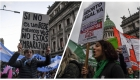 La postura de los famosos ante la despenalización del aborto