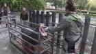 Animales del Zoológico de Buenos Aires preparan su mudanza