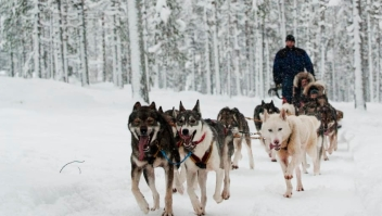 2. Finlandia. Conocida por su naturaleza nevada, Finlandia también obtuvo 93 puntos y quedó en segundo lugar. El país también estaba en lo más alto en la clasificación de Países más Felices del mundo.