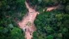 Satélites que combaten mejor la deforestación