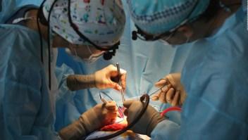 """Ley Justina: """"Todos en Argentina podrán ser donantes de órganos"""""""