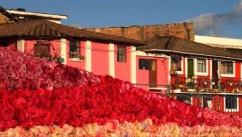 ¿Batirá esta pirámide de rosas un récord Guinness?