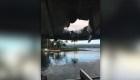 Bomba de lava cae en barco de turistas en Hawai