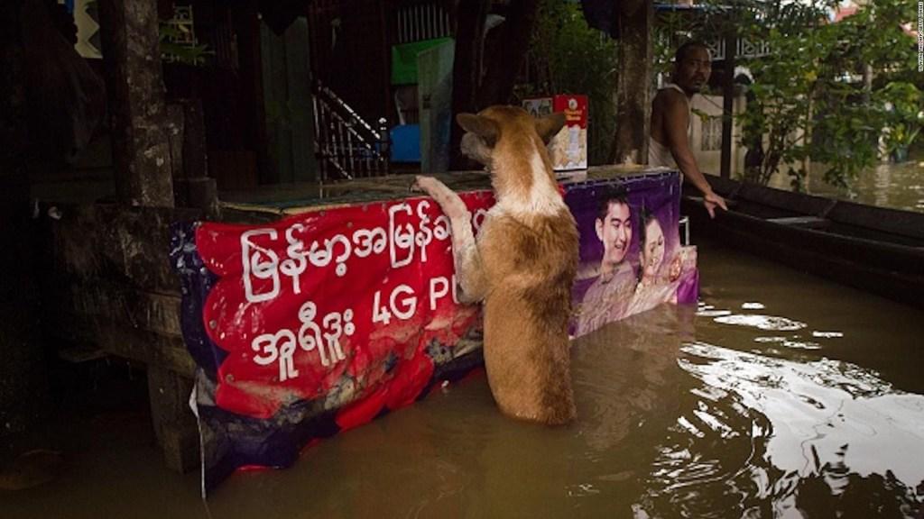 10 muertos por lluvias monzónicas en Myanmar