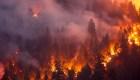 Devastación histórica por incendios en California