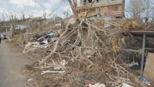 ¿Cuál es la cifra real de fallecidos causados por el huracán María?