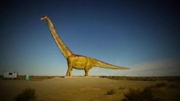 ¿Por qué se han descubierto tantos dinosaurios en Argentina?