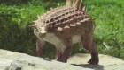 Conoce al Acantholipan gonzalezi, el dinosaurio de Saltillo, México