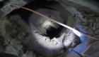 Descubren un narcotúnel de más de 180 metros en Arizona
