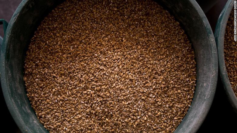 La reacción entre el trigo y la cebada y la orina determinaban el embarazo