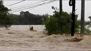Mira cómo la tormenta más fuerte del planeta golpea Filipinas