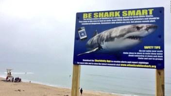 Fatal ataque de tiburón a surfista en Massachusetts