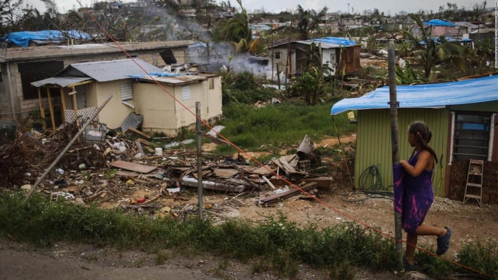 El impacto medioambiental María en Puerto Rico, un año después