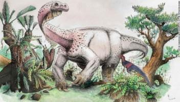 Ledumahadi era un pariente cercano de los dinosaurios saurópodos, como el brontosaurio y otros que comían plantas y caminaban sobre cuatro patas.