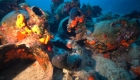 Encuentran tesoro submarino en Grecia