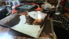"""#ElDatoDeHoy: álbum de Michael Jackson, """"Thriller"""", está de aniversario"""