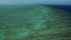 Plan piloto revive la Gran Barrera de Coral