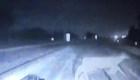 Auto policial casi choca con varios venados en Michigan