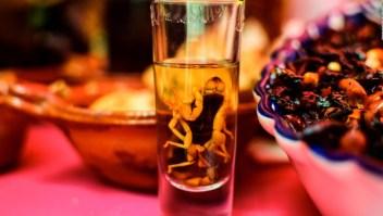 5 datos sobre el mezcal: de bebida corriente a destilado gourmet