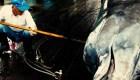 Las ballenas podrán ser cazadas de nuevo en Japón: esta es la razón