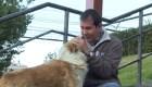 La misión de este hombre es rescatar a los perros sin hogar de Bolivia