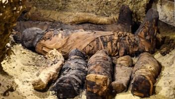 Descubren más 40 momias en Egipto
