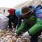 Más de 8 toneladas de basura recolectadas en el Everest