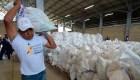 Plan B para el paso de la ayuda humanitaria a Venezuela