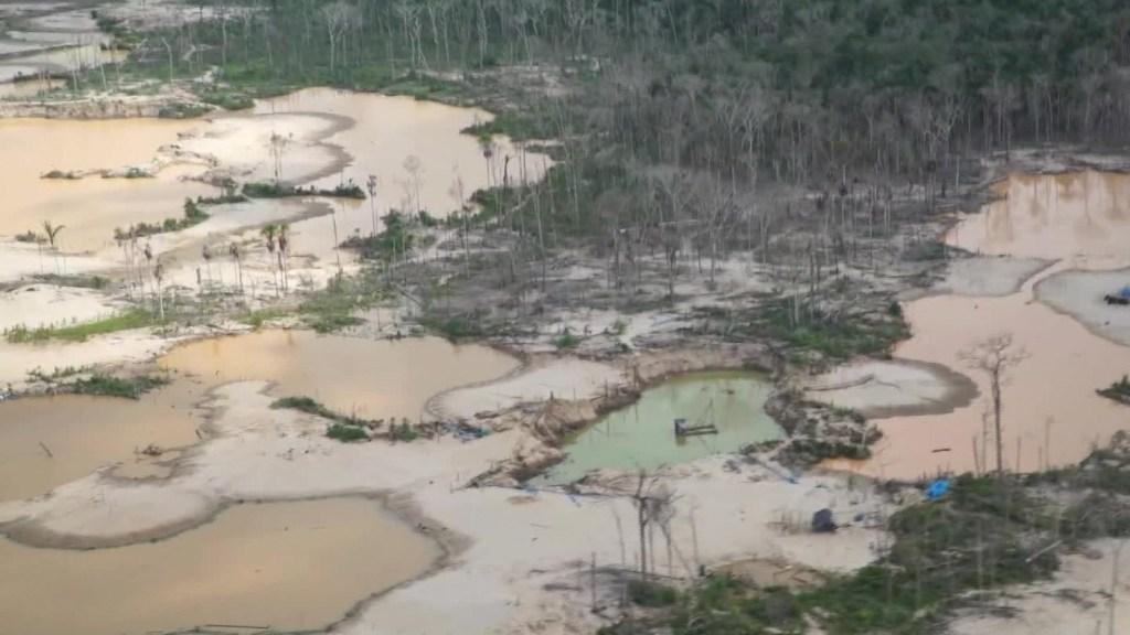 Minería ilegal deforestó miles de hectáreas de selva amazónica