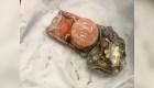 """París investiga """"cajas Negras"""" del accidente aéreo de Ethiopian Airlines"""