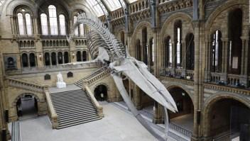 #RankingCNN: ¿Cuáles son los cinco museos más populares del mundo?