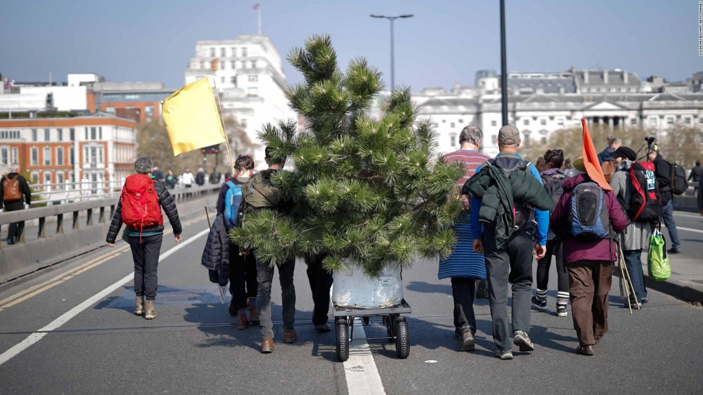 Activistas en Londres protestan con plantas y árboles